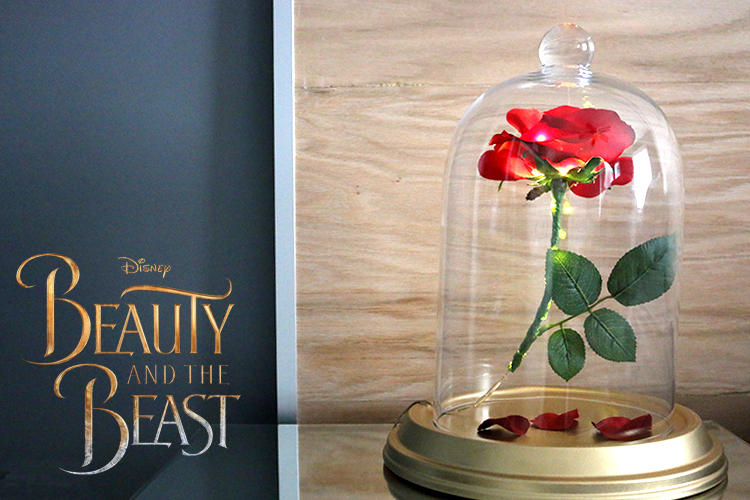 Diy Beauty And The Beast Enchanted Rose Canada Diy Fashion
